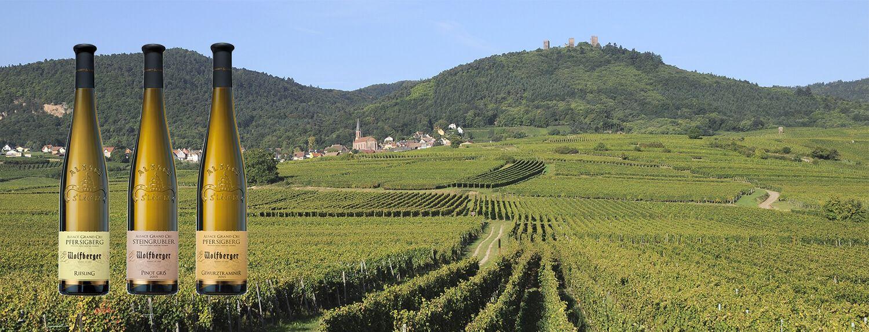 -10% sur nos Alsace Grands Crus PRINTEMPS19