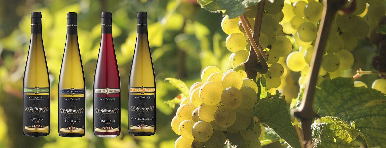 -10% sur une sélection de Vins d'Alsace PRINTEMPS19