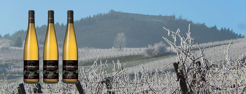 -10% sur une sélection de Vins d'Alsace Hiver 2019